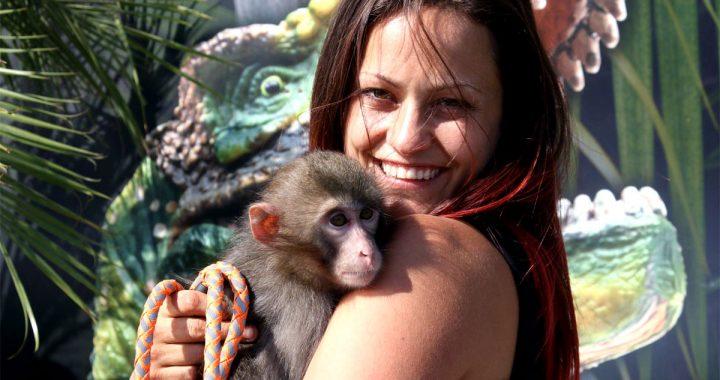 Émilie Gaudry de Repti-Zone fait revivre le Zoo de Saint-Édouard