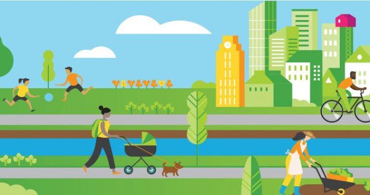 Dévoilement d'un plan ambitieux en transition écologique pour l'Arrondissement du Sud-Ouest
