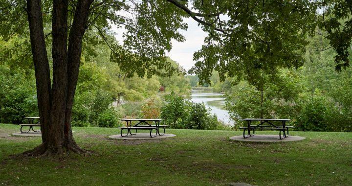 La Ville de Montréal annonce des travaux de réaménagement majeurs au parc Angrignon